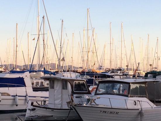 Botel Alcudiamar Hotel: Marina boats