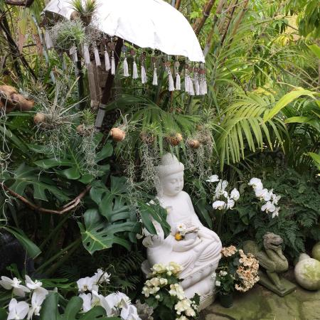 Summerland, CA: Cozy corner for contemplation