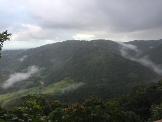 Morovis, Puerto Rico: photo6.jpg