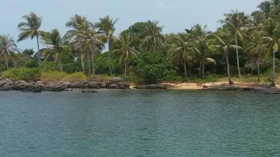 Sunny Boat Trip: 1er spot