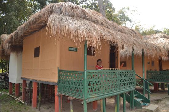 Nature Hunt Eco Camp, Kaziranga: four such accomadation are there