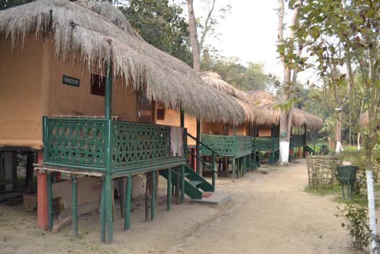 Nature Hunt Eco Camp, Kaziranga صورة