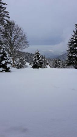 Gastehaus Behabuhl: Prachtige omgeving om te wintersporten!