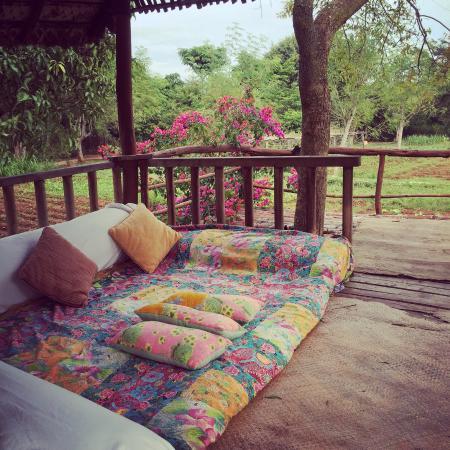 Фотография Shreyas Yoga Retreat