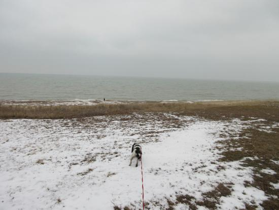 Beverly Shores, IN: beach