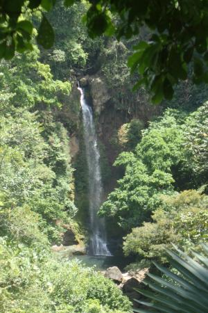 Provincia de Coclé, Panamá: Tavida Waterfall as viewed from the trail leading to the waterfall.