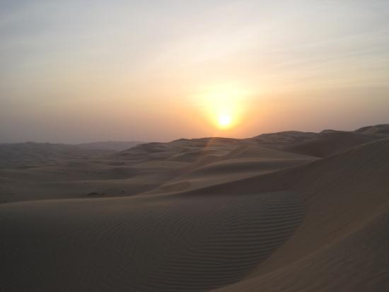 Foto de Liwa Oasis