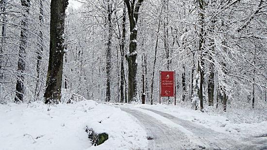 Jarnoltowek, Polen: Zima w Hotelu Dębowe Wzgórze