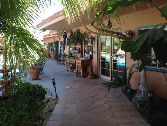 The Coyote Inn-bild