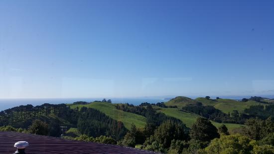 Manawa Ridge: View from the tower
