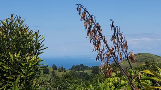 Manawa Ridge: view from the hotel grounds