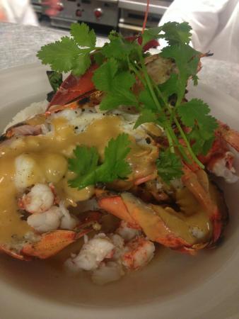 Macungie, PA: Lobster week plates