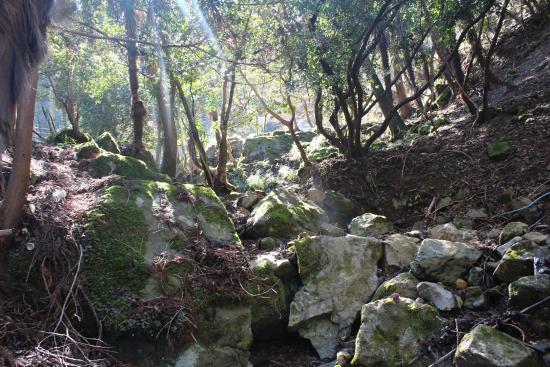 Shimootomi Waterfall