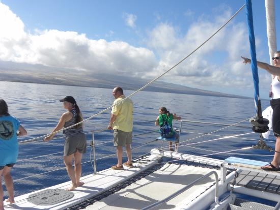 Ocean Sports Whale Watch Adventure: the boat and whale watchers