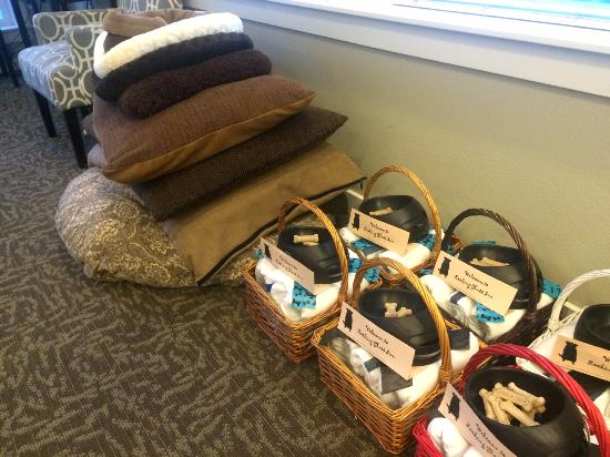 Lincoln City, OR: Complimentary pet baskets and beds!