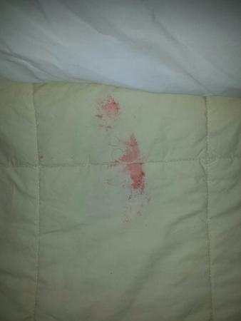 Quality Inn East Windsor: sticky red stuff on comforter