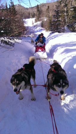 Mont Tremblant Activity Centre: on the trail