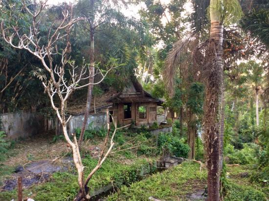 Villa Wanakerta: in ruins