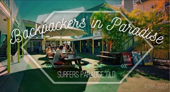 party hostel review of backpackers in paradise surfers paradise rh tripadvisor com au