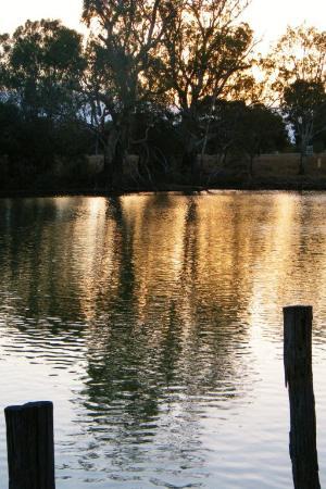 Bidgee Riverside Trail: Murrumbidgee at Hay - sunset