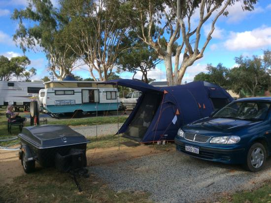 Avon Valley, Australia: Grassy sites for tents and shady trees