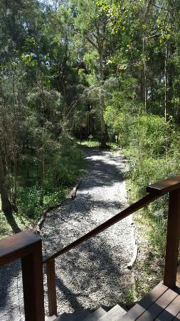 Woollamia, Australia: 20160304_142305_001_large.jpg