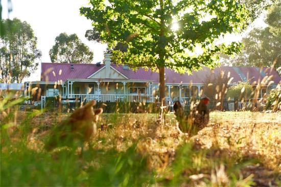 Karri House
