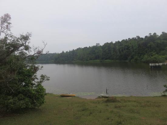 Hiyare Rainforest Reservoir: Erholung pur...