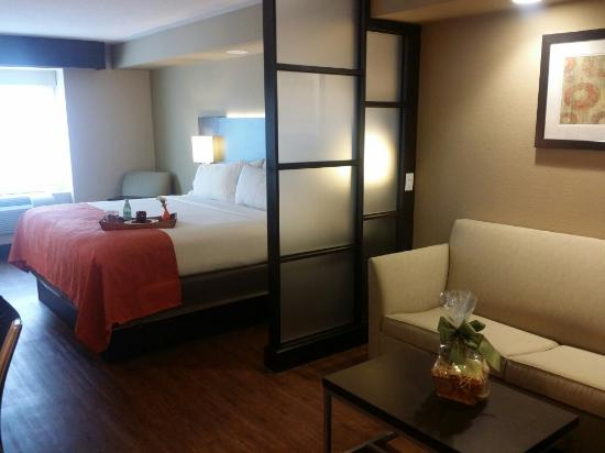 Holiday Inn Express Suites San Antonio Medical Center North Nice Rooms