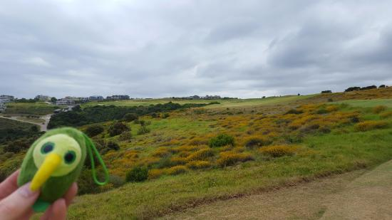 Oubaai Golf Course: Oubaai 18th