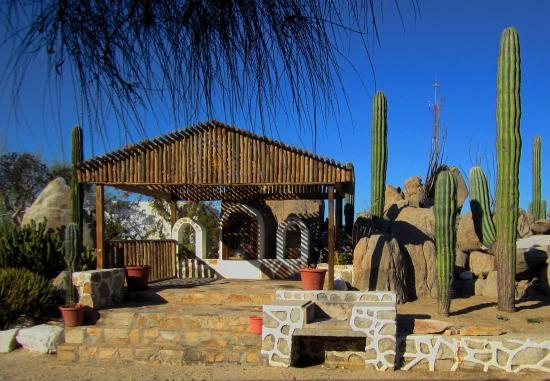 Catavina, Μεξικό: Hotelgarten