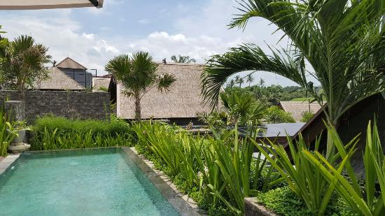 Beautiful and just a perfect villa for a private get away.