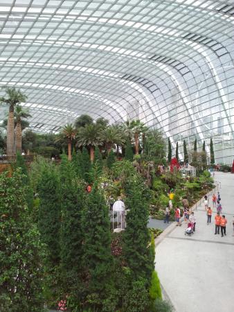 Indoor Garten In Singapur Gardens By The Bay Singapore Amazing ...