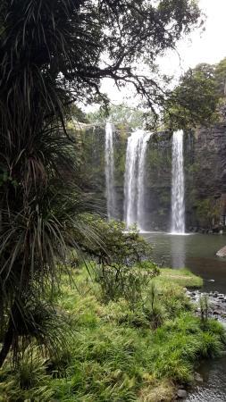 Whangarei, Nueva Zelanda: This was taken from the walk down to the base