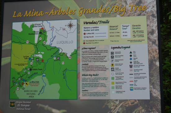 Trail map - Picture of The El Yunque Rain Forest, El Yunque ...