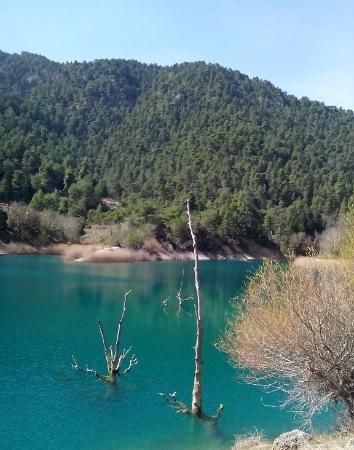 Akrata, اليونان: Λίμνη Τσιβλού λεπτομέρεια