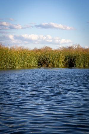 Braunig lake san antonio tx top tips before you go for San antonio fishing spots