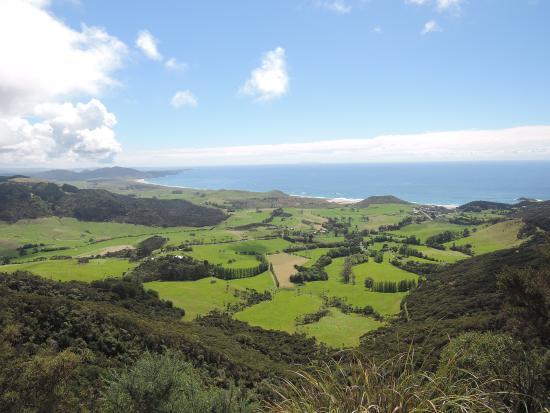 Whangarei, Nya Zeeland: photo2.jpg