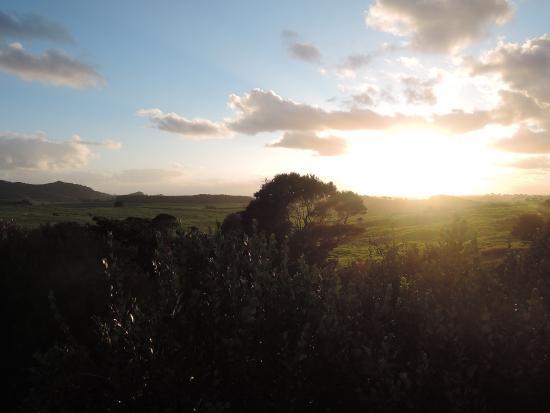 Whangarei, Nya Zeeland: photo3.jpg