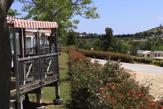 Parque de campismo Orbitur Valverde : one of the parks view