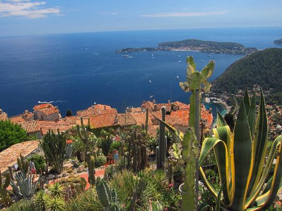 bellezze sul mare - Picture of Le Jardin exotique d'Eze ...