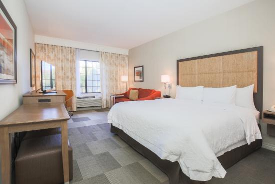 Hampton Inn & Suites Camarillo: King guest room
