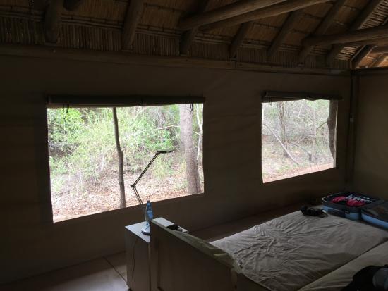 Timbavati Private Nature Reserve Resmi