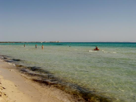 Traumhafter Strand im Südosten Mallorca - Picture of Es Trenc, Campos - TripA...