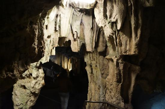 cueva de nerja - Picture of Cueva de Nerja, Nerja - TripAdvisor
