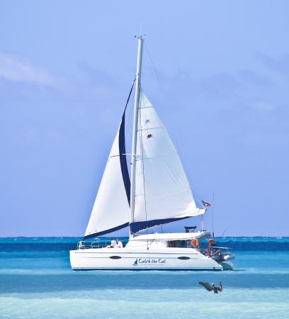 Catch The Cat - Private Sailing Charters