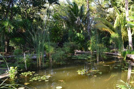 Bilde fra Hacienda Xcanatun