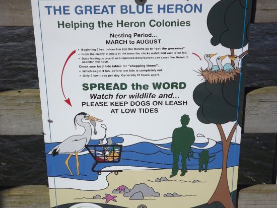 Heron Sign at the Courtenay Airpark