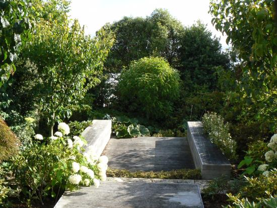 Kenthurst Lodge B & B: Section of garden with steps