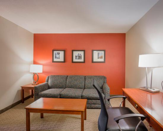 Comfort Inn & Suites South: King Suite